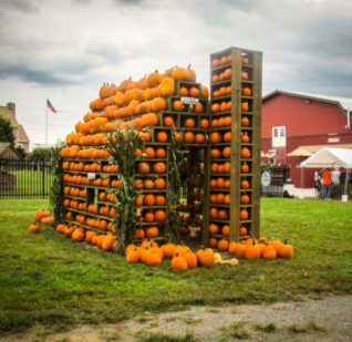 Fall Fun for All at Milburn Orchards