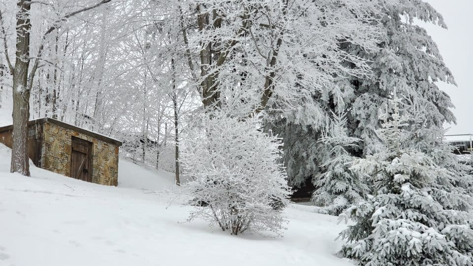 Winter in Laurel Highlands
